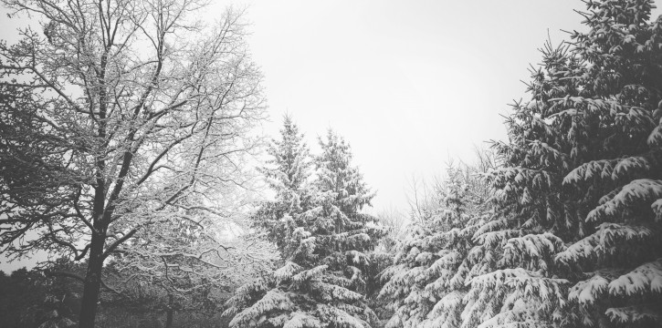 6 HVAC Tips for Winter